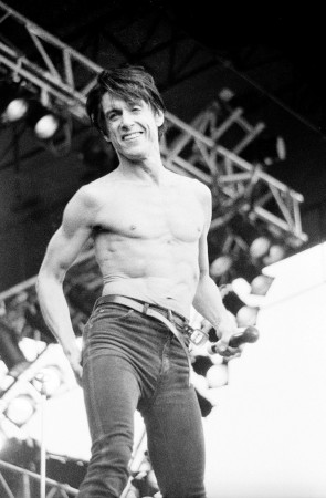 """Iggy Pop - pinkpop87"" by Yves Lorson - originally posted to Flickr as Iggy Pop. Licensed under Creative Commons Attribution 2.0 via Wikimedia Commons - http://commons.wikimedia.org/wiki/File:Iggy_Pop_-_pinkpop87.jpg#mediaviewer/File:Iggy_Pop_-_pinkpop87.jpg"